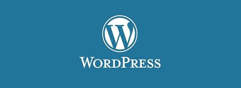 WordPress. Как вставить свой javascript в запись